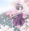 桜吹雪恋心/和花
