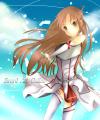 Sword Art Online/☆STN☆