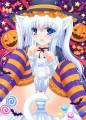ハロウィン☆白猫!