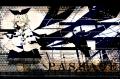 【RLM7】PASSAGE
