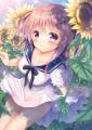 向日葵畑で秘密の×××